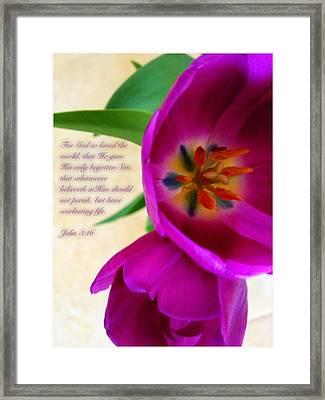 John 3 16 Framed Print