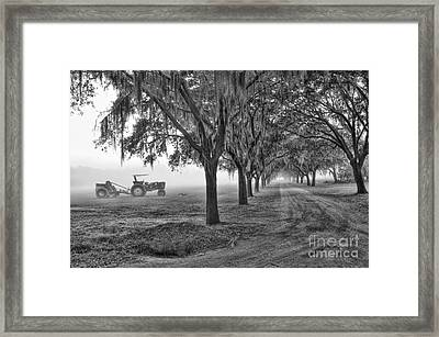 John Deer Tractor And The Avenue Of Oaks Framed Print