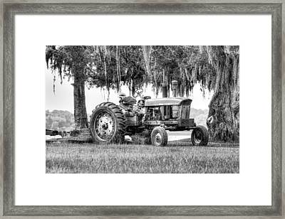 John Deer Tractor Under The Old Cedar Framed Print