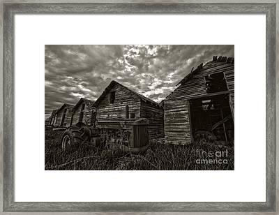 John Deere Framed Print by Darcy Shawchek