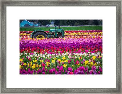John Deere In Spring Framed Print