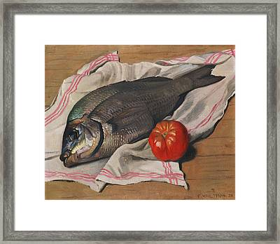 John Dory Framed Print by Felix Edouard Vallotton