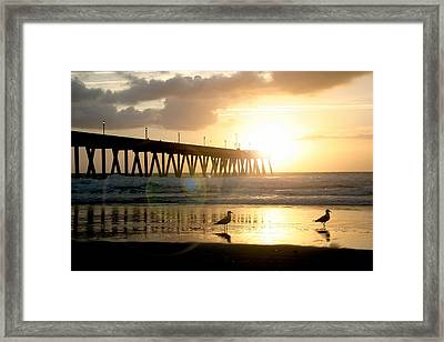 Johnnie Mercer's Pier With Birds Framed Print