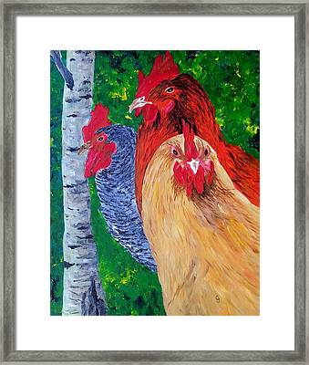 John's Chickens Framed Print
