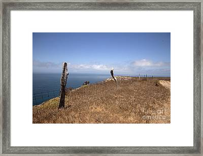 Join The Ranks Framed Print by Amanda Barcon