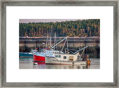 Framed Print featuring the photograph Jonesport Maine  by Trace Kittrell