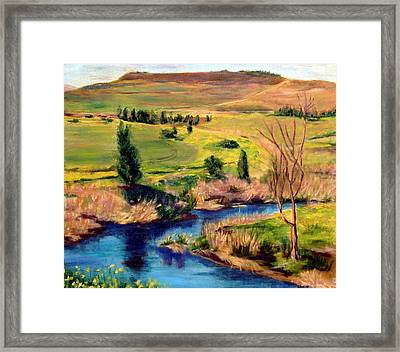 Jordan River In Israel Framed Print by Hannah Baruchi