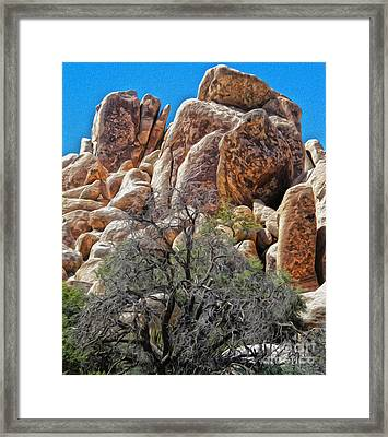 Joshua Tree - 05 Framed Print by Gregory Dyer
