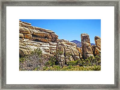 Joshua Tree - 10 Framed Print by Gregory Dyer