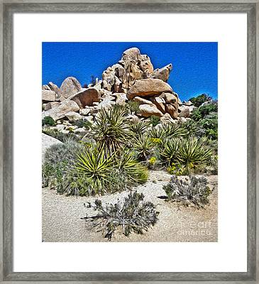 Joshua Tree - 12 Framed Print by Gregory Dyer