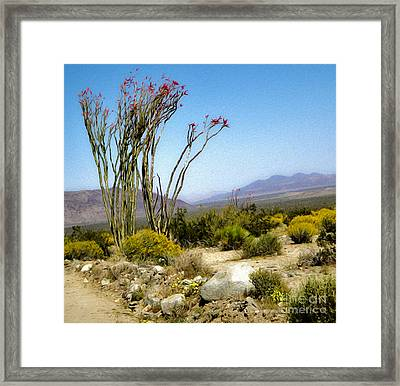 Joshua Tree - 18 Framed Print by Gregory Dyer