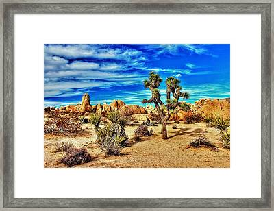 Framed Print featuring the photograph Joshua Tree by Benjamin Yeager