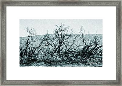 Joshua Tree - Burned Out Trees Framed Print by Gregory Dyer