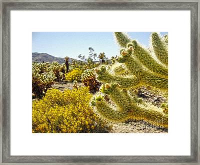 Joshua Tree Cholla Cactus Garden Framed Print by Gregory Dyer