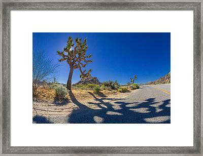 Joshua Tree Crossing Framed Print