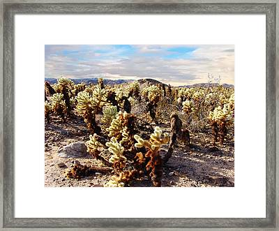 Joshua Tree National Park 3 Framed Print by Glenn McCarthy Art and Photography