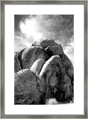 Joshua Tree Rocks Joshua Tree Framed Print by William Dey