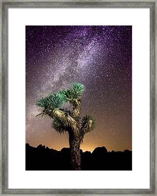 Framed Print featuring the photograph Joshua Tree Vs The Milky Way by Robert  Aycock