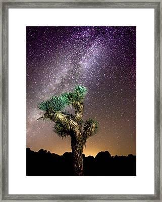 Joshua Tree Vs The Milky Way Framed Print