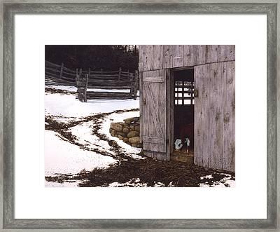 Joshua's Place Framed Print by Tom Wooldridge
