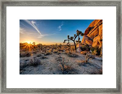 Joshua's Sunset Framed Print by Peter Tellone