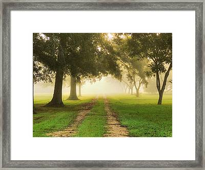 Journey Into Fall Framed Print