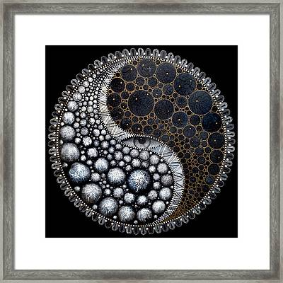 Self Awareness Framed Print