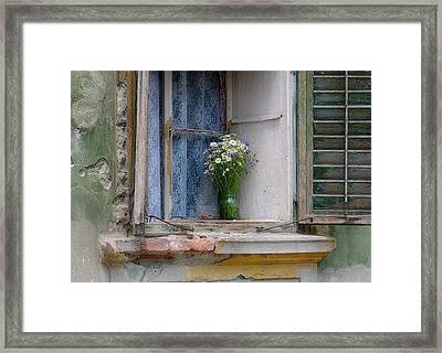 Joy In The Window Framed Print