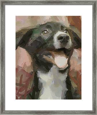 Joyee Doggy Framed Print