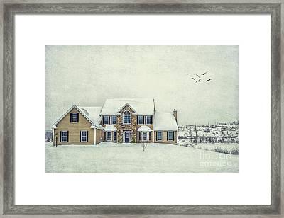 Joyless Trance Of Winter Framed Print