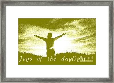 Joys Of The Daylight Framed Print
