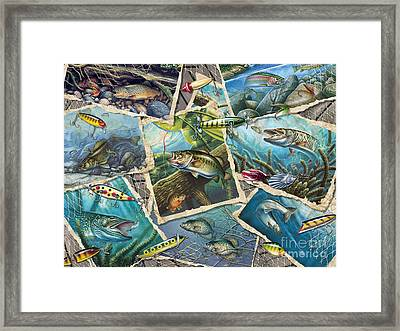 Jq's Fishing Collage Framed Print