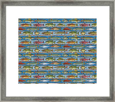 Jqw Fish Row Bedding Framed Print
