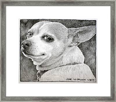 Jose Framed Print by Lorraine Zaloom