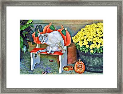 Judy Blue Eyes Framed Print by Kenny Francis