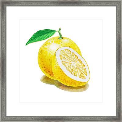 Juicy Grapefruit Framed Print by Irina Sztukowski