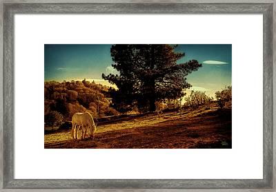 Springtime California Landscape Framed Print