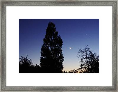 Julian Night Sky 2013 A Framed Print