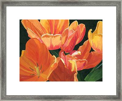 Julie's Tulips Framed Print