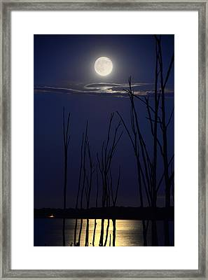 July 2014 Super Moon Framed Print by Raymond Salani III
