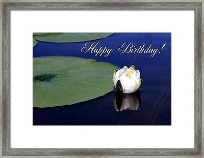 July Birthday Framed Print