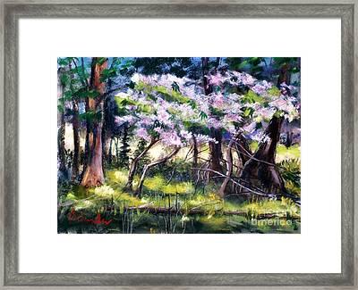 July Bloom Framed Print by Bruce Schrader