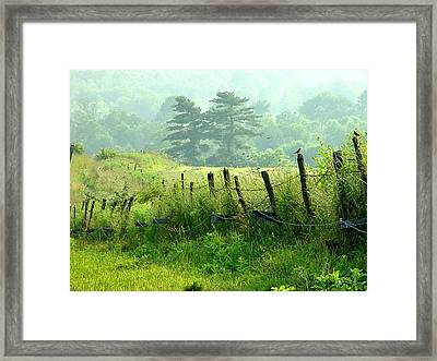 Award Winning - Looks Like A Painting - July Fourth Evening Framed Print