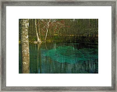 July Spring II.  Framed Print