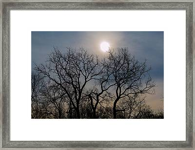 Jump Ball-2-lr Framed Print