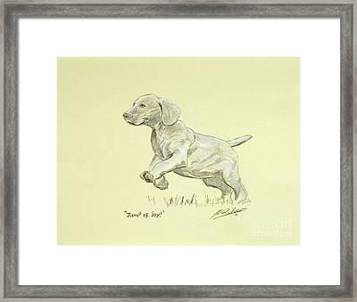 Jump Of Joy Framed Print by John Silver