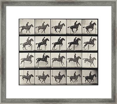 Jumping A Hurdle Framed Print by Celestial Images