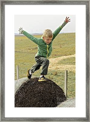 Jumping Haystacks Framed Print