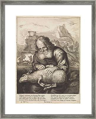 June A Shepherd Shears A Sheep, Print Maker Anonymous Framed Print by Anonymous And Jonas Suyderhoef And Joachim Von Sandrart