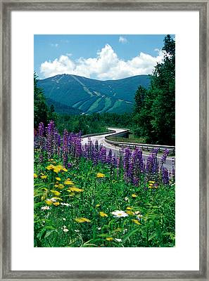 June In Franconia Notch Framed Print